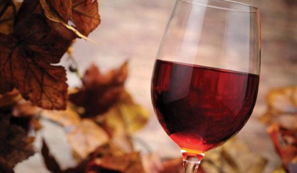 Elegant Autumn Reds  Autumn